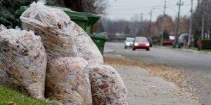 Pour la planète, la pire chose à faire avec vos feuilles mortes, c'est de les laisser dans des sacs de plastique.