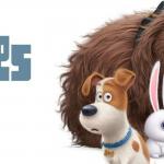 Le film Comme des bêtes est à l'affiche au Québec depuis le 8 juillet 2016.