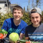 Antony Paradis et Nolan Brissette livrent des fruits et légumes frais à leur voisinage, une entreprise qu'ils opéreront pour un troisième été en 2017.